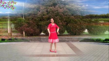 红领巾梦之湖广场舞 桃花姑娘