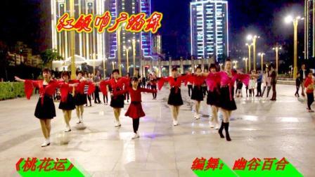 红领巾蝶舞芳香广场舞 桃花运 团队版