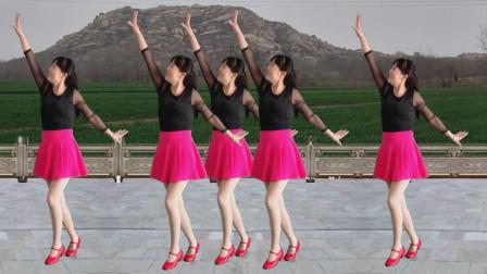 阿真广场舞 广场舞 舞起来嗨起来 歌曲带劲动感 演示附分解!