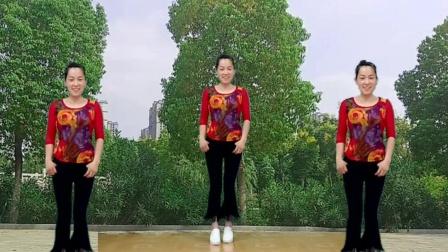 玫香广场舞 16步广场舞 心痛 旋律优美 好听好看