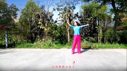 清荷广场舞 山谷里的思念 编舞 杨艺格格