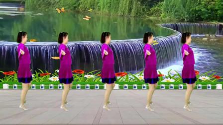 零基础16步广场舞 花蝴蝶 看一遍就会跳了