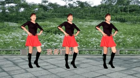 玫香广场舞 爱我就把我来追求 经典老歌