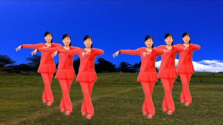 玫香广场舞 忘不了你的温柔 16基础步 简单易学 安东阳演唱