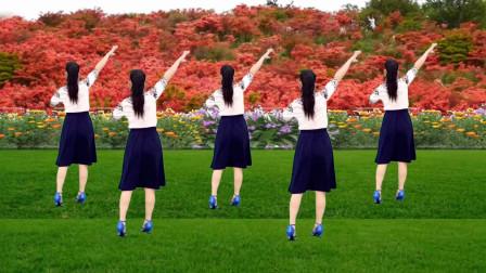 玫香广场舞 2019最火广场舞 站着等你三千年 背面附教学