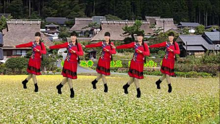 广场舞 荞麦花 真的好好听 有原生态的美 纯净的嗓音 甜美动听