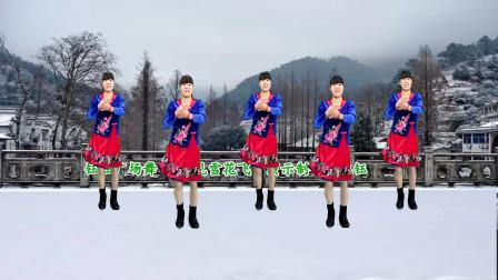 广场舞寒冷的冬季 又见雪花飞 我的家乡下雪了 音乐好听 附分解