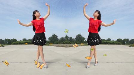 最新热门广场舞 春天蝴蝶飞 简单欢快32步 好听又好看