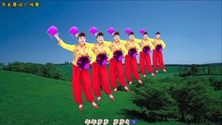 2020贺新年广场舞 岁岁好年 唱歌跳舞送祝福