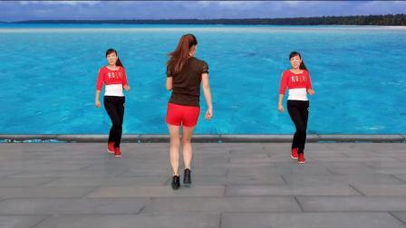玫香广场舞 对跳自由步 十个男人九个坏