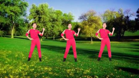 玫香广场舞 好学的舞 好听的歌 好看的动作 心动不如行动舞起来