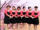 雨薇踏歌广场舞桃花运、2014广场健身舞