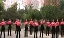清雅广场舞 今夜舞起来 2014广场健身舞