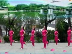 刘荣广场舞 今生只爱你一个 附教学和背面演示