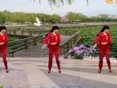 龙游红飞舞广场舞 《九九艳阳天》 含背面分解教学