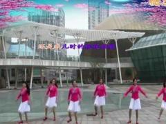 柳州彩虹健身队演示《桃花姑娘》编舞:雨夜